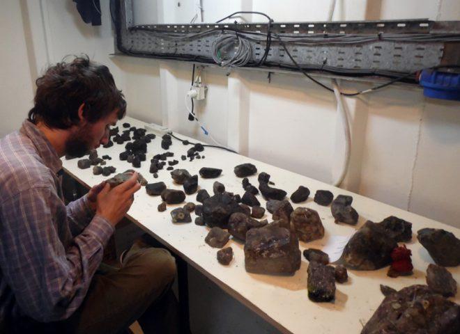 Estudio macroscopico de las muestras obtenidas en las dragas de arrastre. (Alejandro Tassone)