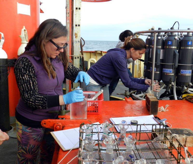 Analizando muestras marinas a bordo del buque Puerto Deseado durante una de las campañas de 2013. (Alberto Piola)