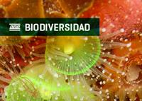 img_biodiversidad02