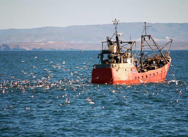 Industria pesquera II. Gentileza GONZALEZ ZEVALLOS, Diego.