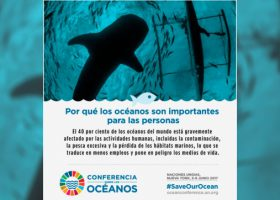 The Oceans Conference – ONU