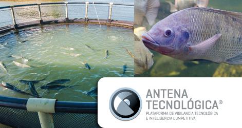 LANZAMIENTO | ANTENA TECNOLOGICA: ACUICULTURA