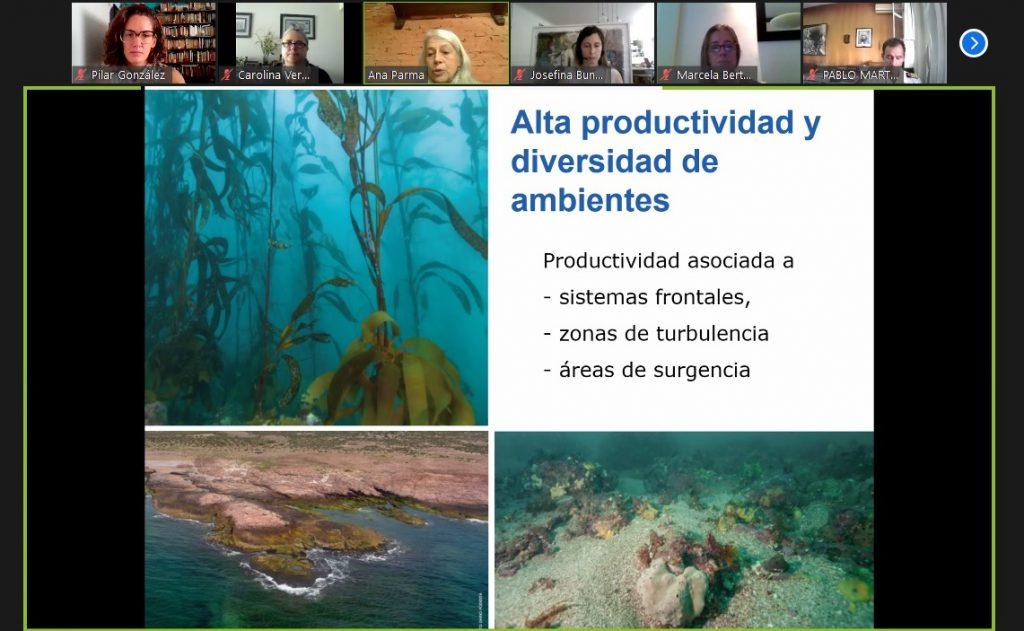 Se realizó la 5ta reunión del Comité Interministerial de Pampa Azul